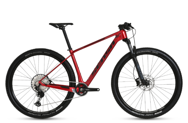 Fiori Evo – mountainbike